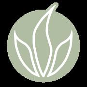 Active Aloe Vera